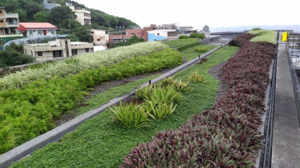 綠屋頂案例