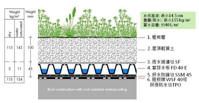 薄層綠化系統剖面pic