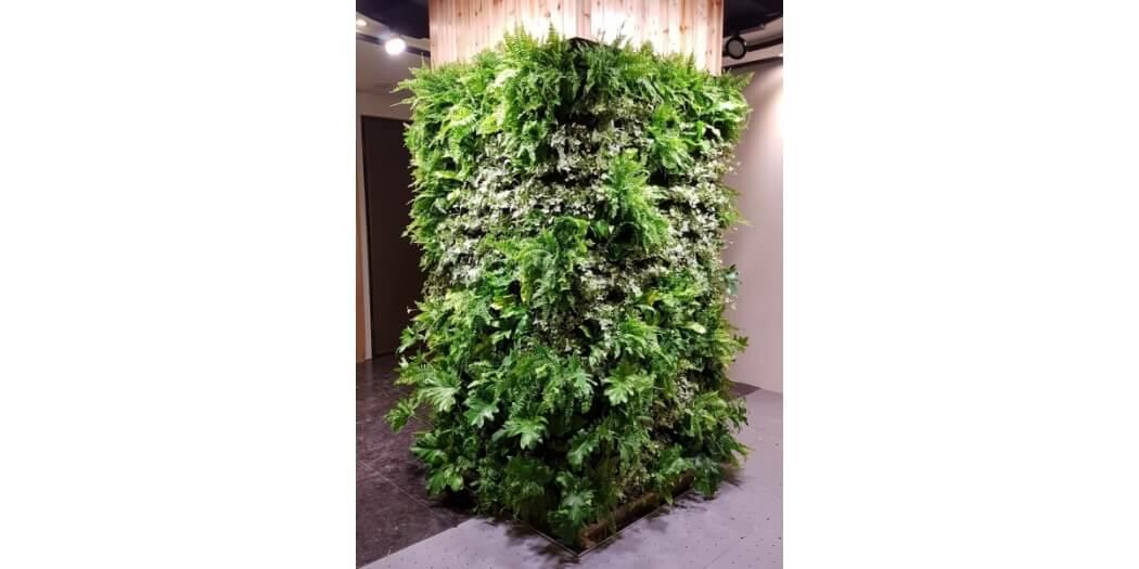 中悅花園綠牆