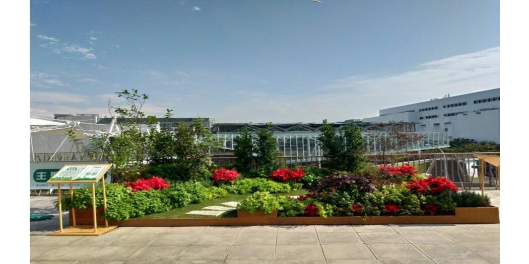 內湖花市綠屋頂pic