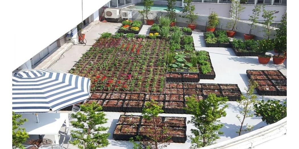 仁德區公所屋頂綠化