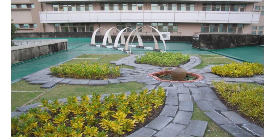 民治市政中心綠屋頂