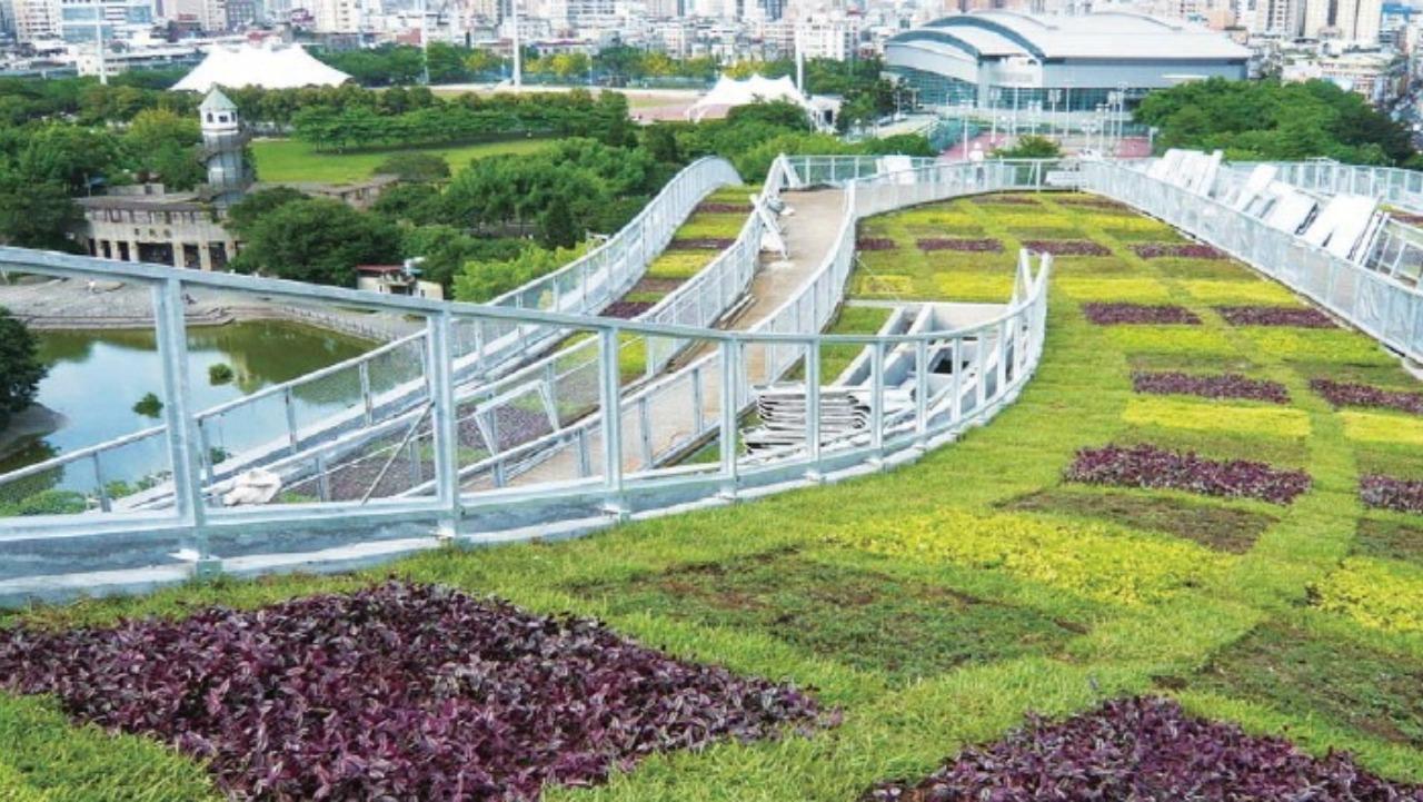 新莊運動休閒中心綠屋頂案例
