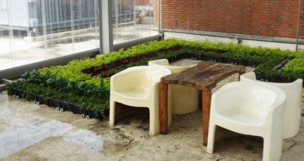 保綠植生盆案例