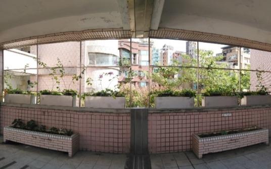 蘭雅國小綠牆2