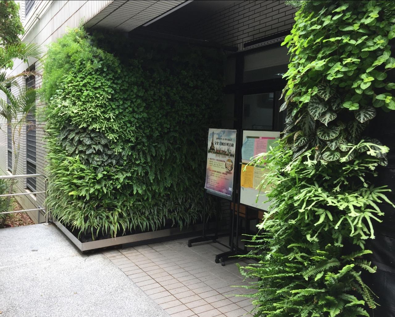逢甲大學綠牆1