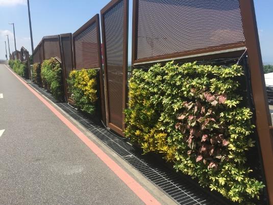 台中機場綠牆1