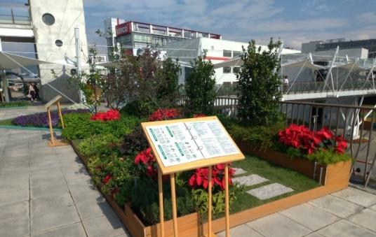 內湖花市庭園式綠屋頂