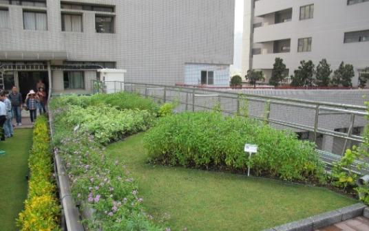 高醫空中花園1