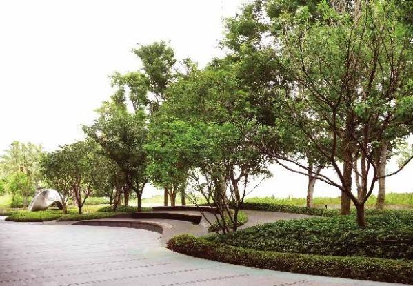 植生地錨綠化案例