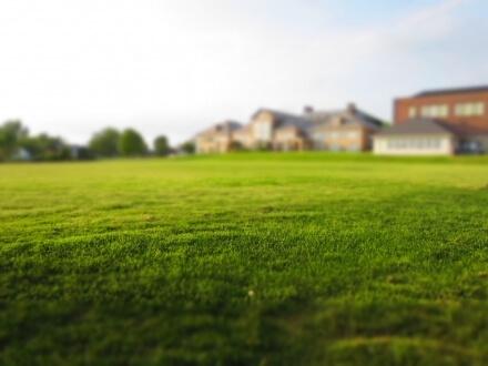 草坪pic