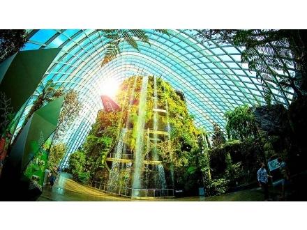 後疫情時代下的台灣都市綠化